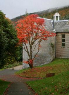 Arvon Residential Writing Courses Shropshire - Forth Image