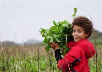 Farms for City Children Outdoor Residential Centre Pembrokeshire - Main Image