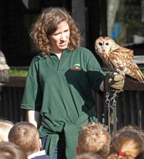 Wildwood Trust Wildlife Education Kent - Second Image