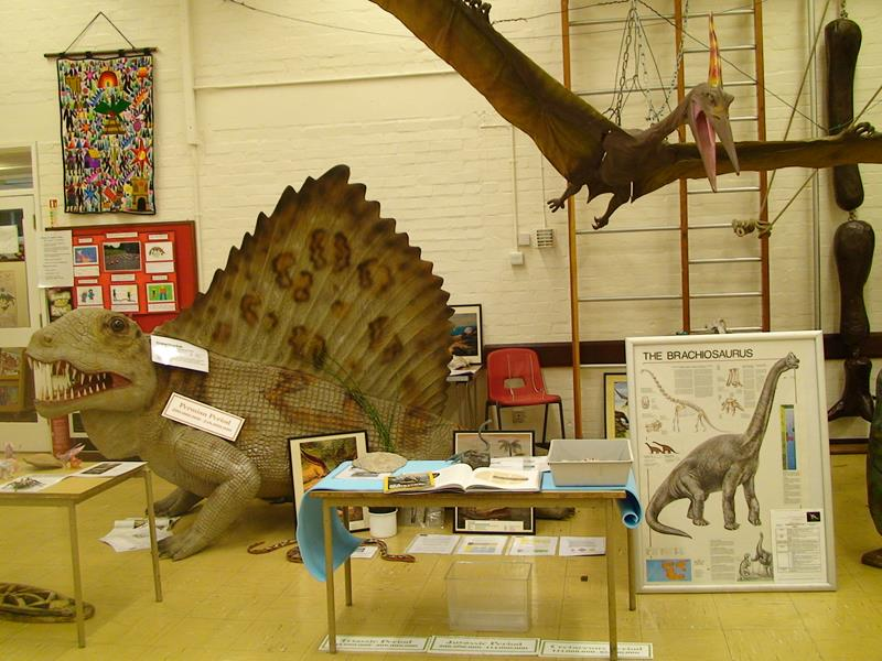 Travelling Natural History Dinosaurs and Fossils Museum School Workshops London, South East and East of England - Third Image