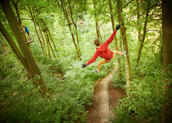 Go Ape Outdoor Adventure Activities High Ropes East Midlands - Forth Image