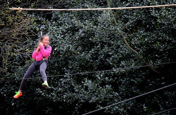 Skywalk Adventure High Ropes Surrey - Forth Image