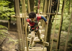 thumb_treetop-trek-adventure-1