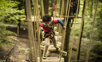 Treetop Trek Manchester: Outdoor Adventure High Ropes - Main Image