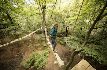 Treetop Trek Manchester: Outdoor Adventure High Ropes - Forth Image