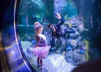 thumb_skegness-aquarium-1