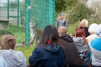 Isle of Wight Zoo - Second Image