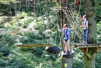 Trafford Treetop Adventures - Forth Image