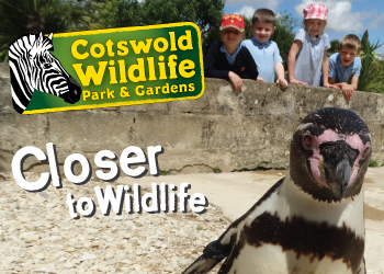 Cotswold Wildlife Park and Gardens - Main Image
