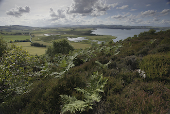 RSPB Loch Leven - Forth Image